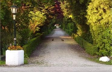 Buiten-gewoon-groen-geheel-©Leni-van-Noord-klein.jpg